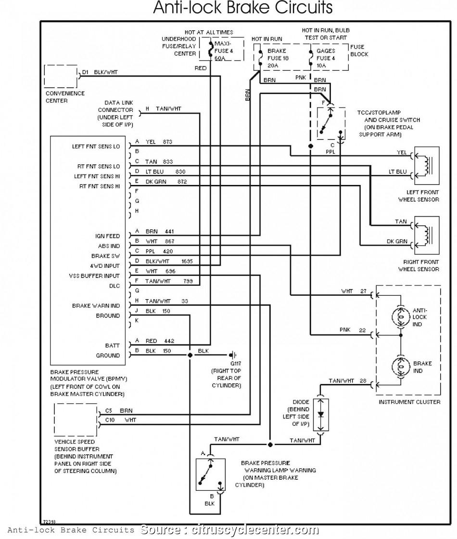 Snowbear Trailer Wiring Diagram