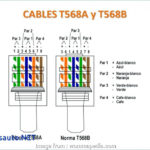 Cat 5 Wiring Diagram For Internet