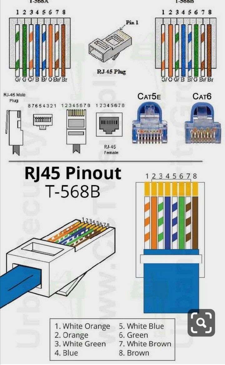 Cat 5 Wiring Diagram Cable