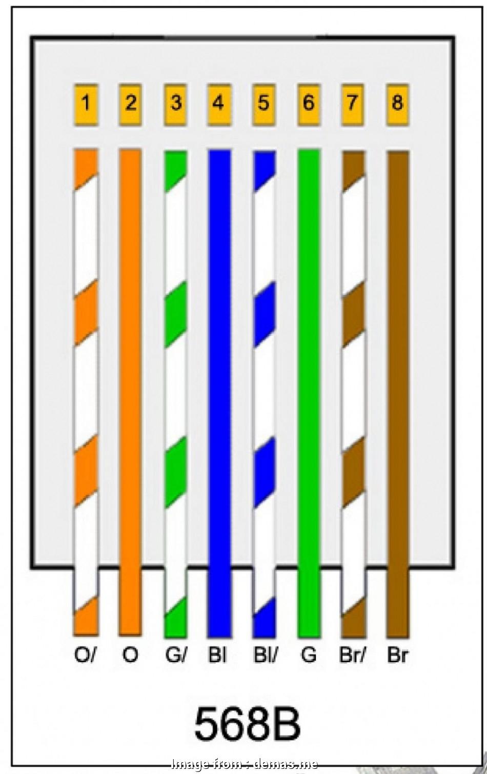 Cat 45 Wiring Diagram