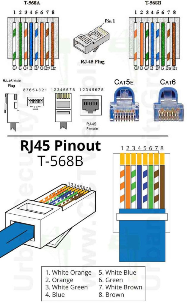 Cat 5 Cable Connector Cat6 Diagram Wire Order E Cat5e With
