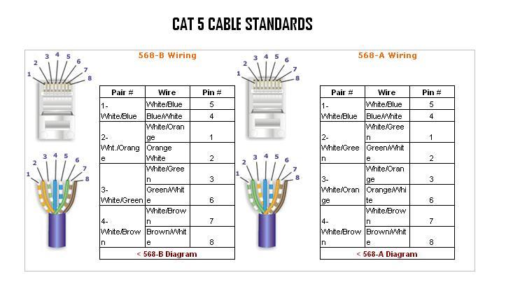 Standard Cat 5 Wiring Diagram, Cat Wiring Diagram